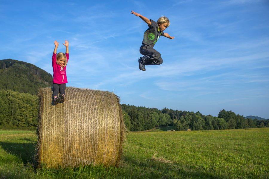 dzieci skaczące ze stogu słomy na wsi