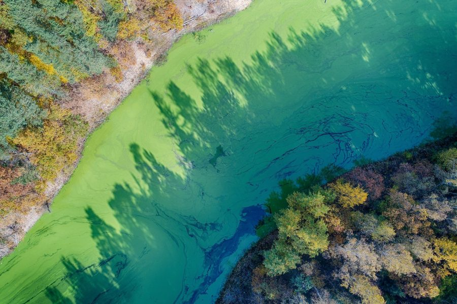 Jezioro Pilchowickie Fot. Artur Kowalczyk, Polska Zachwyca ©