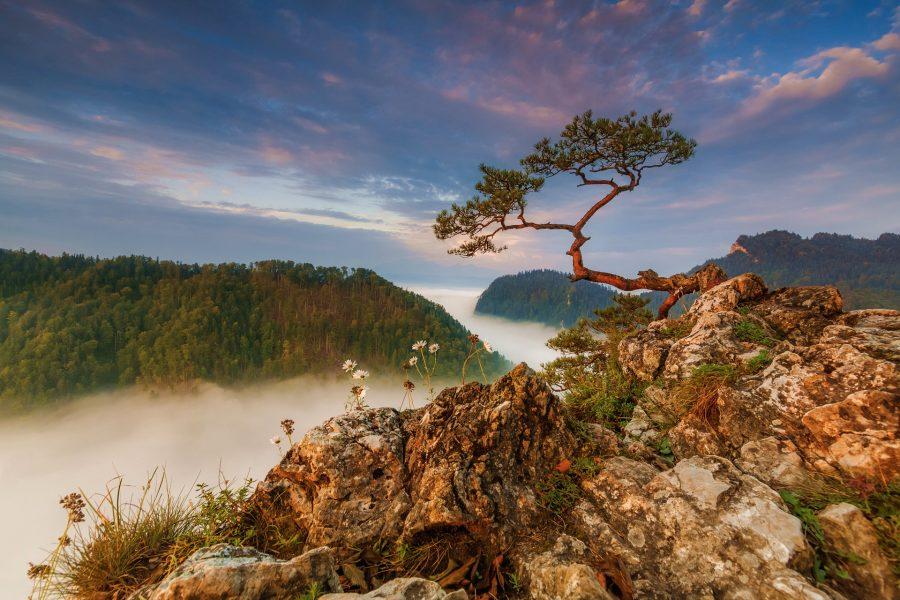 najpiękniejsze miejsca w polsce sokolica