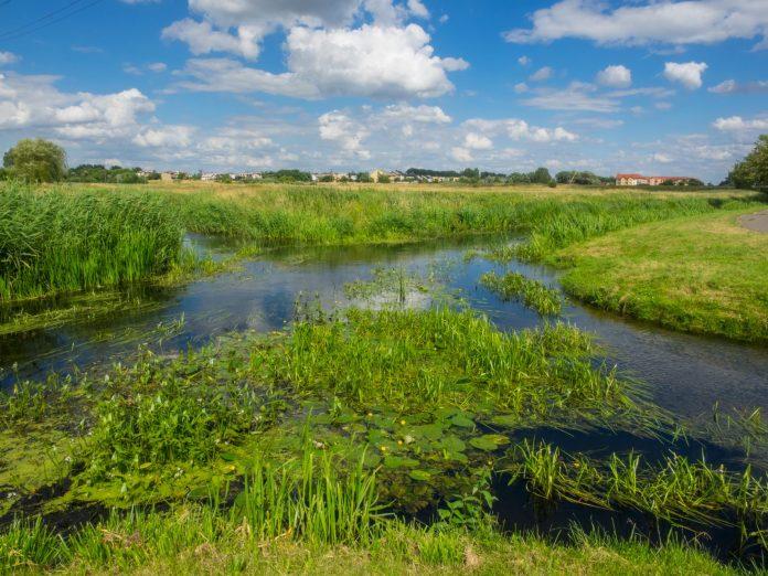Skrzyżowanie rzek w Wągrowcu