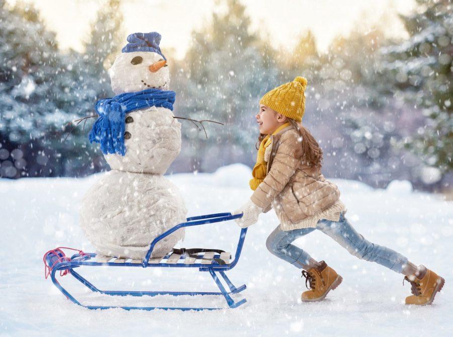 kalendarz ferii zimowych 2018