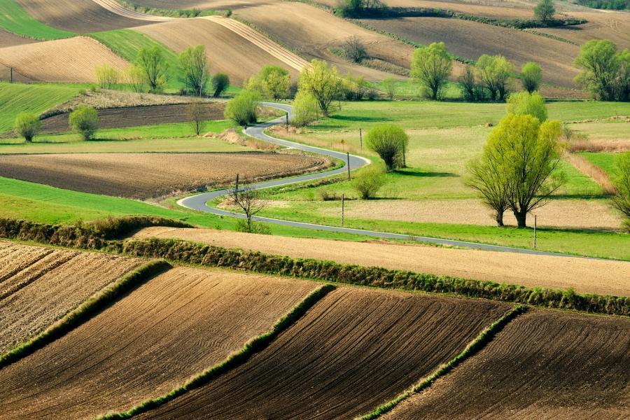 gdzie jechać wiosną w polsce ponidzie