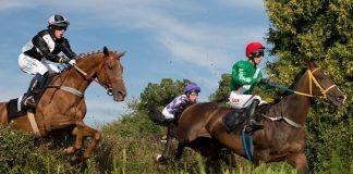 konie ścigające się na partynicach