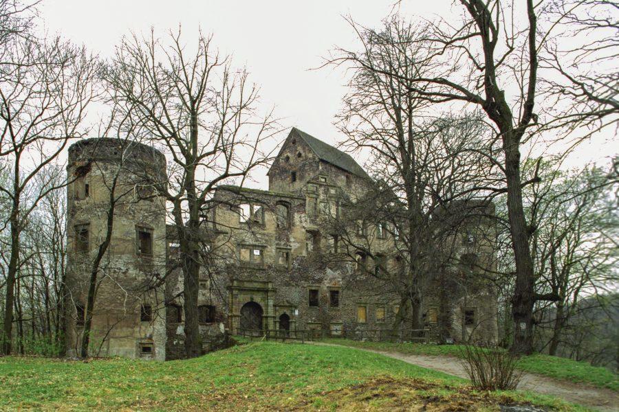 zamek świny zamek świnków