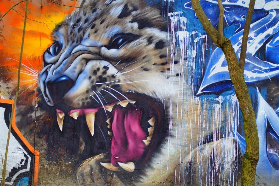 mural w łodzi przedstawiający geparda