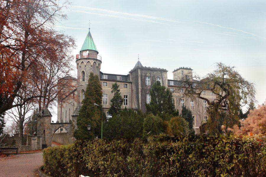 zamek leśna szczytna pałac leśna skała