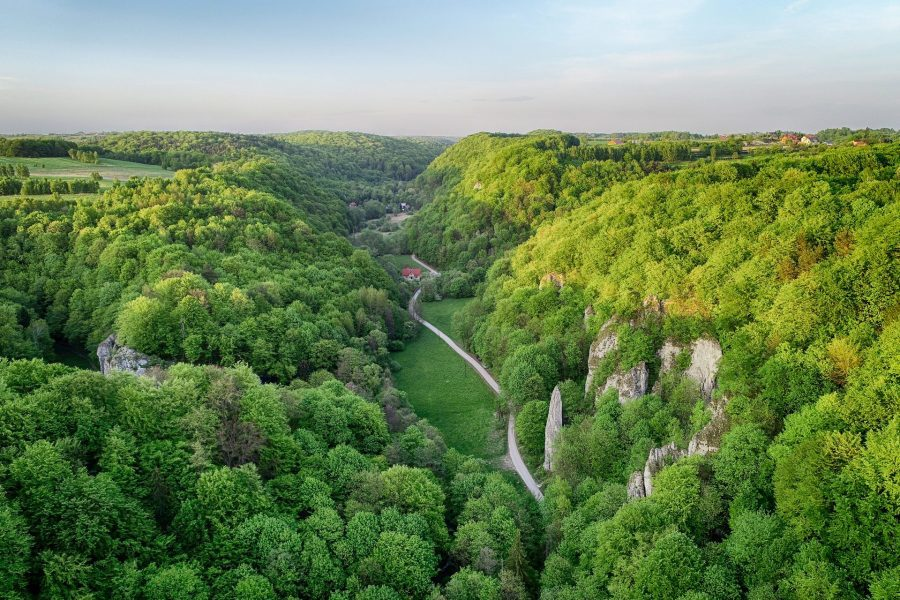 Dolina Będkowska latem z drona