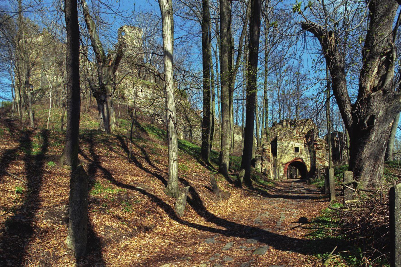 Kup sobie gotycki zamek Gryf izostań dziedzicem