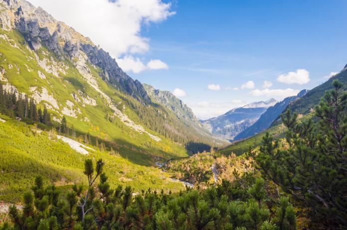 Dolina Roztoki w Tatrach
