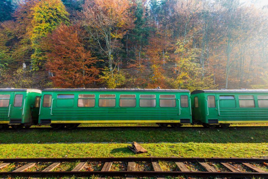 pociąg Bieszczadzka Kolejka Leśna