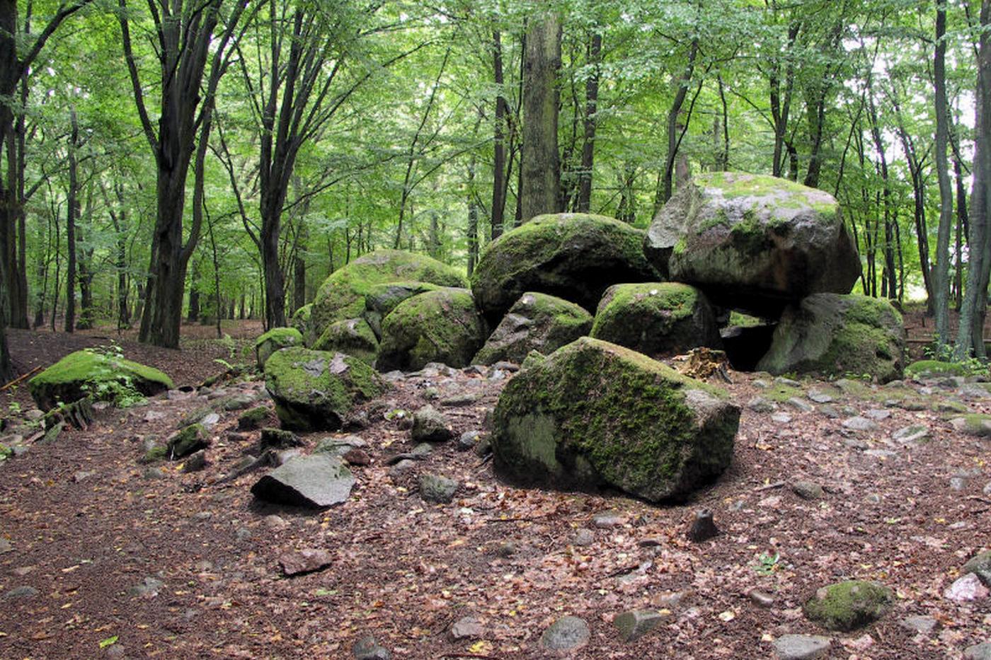 Megality w Borkowie