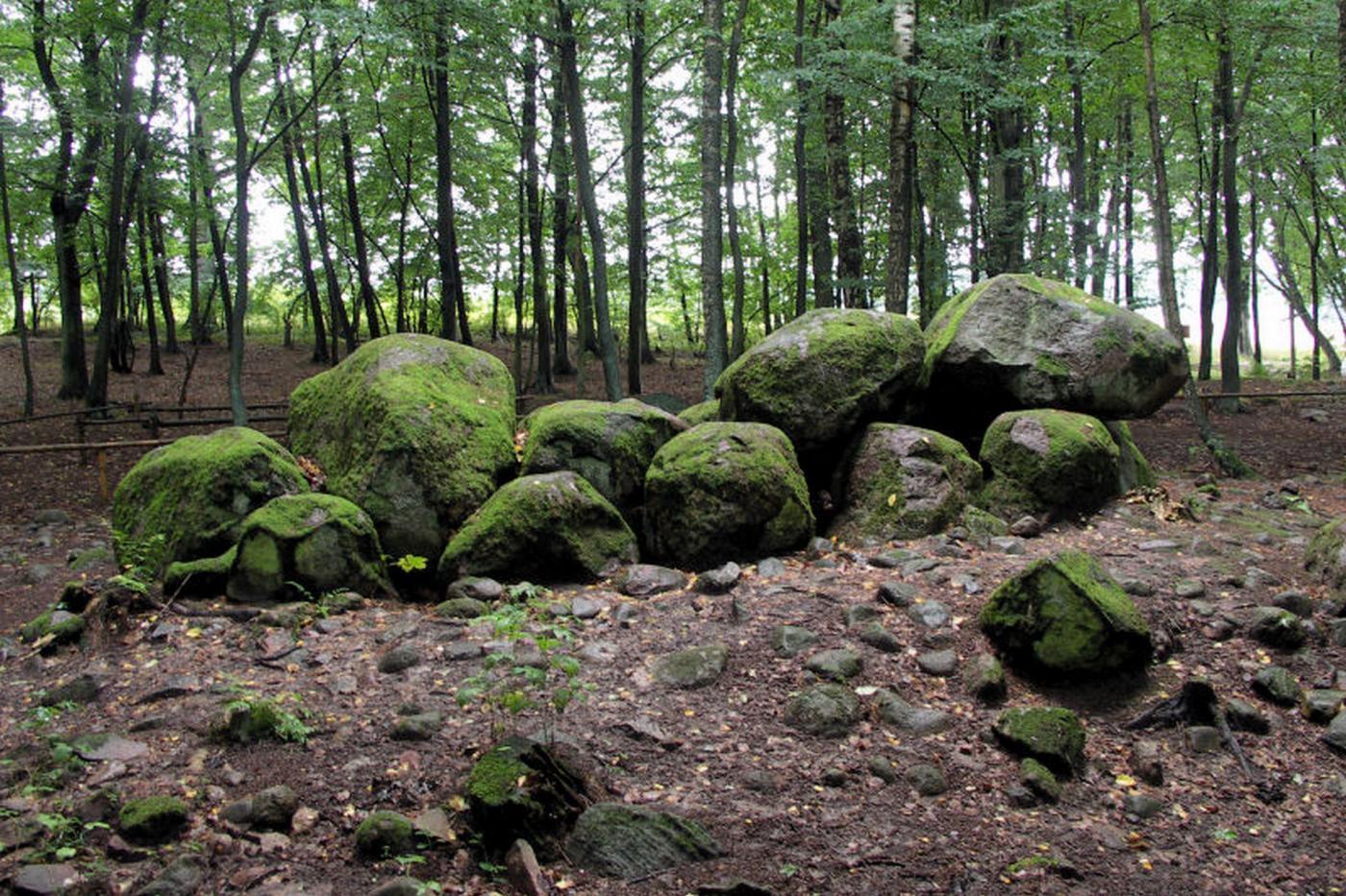 Megality w Borkowie – tajemnicze grobowce sprzed 5 tysięcy lat