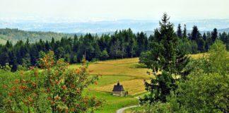 Kapliczka w górach. Koskowa Góra, Beskidy