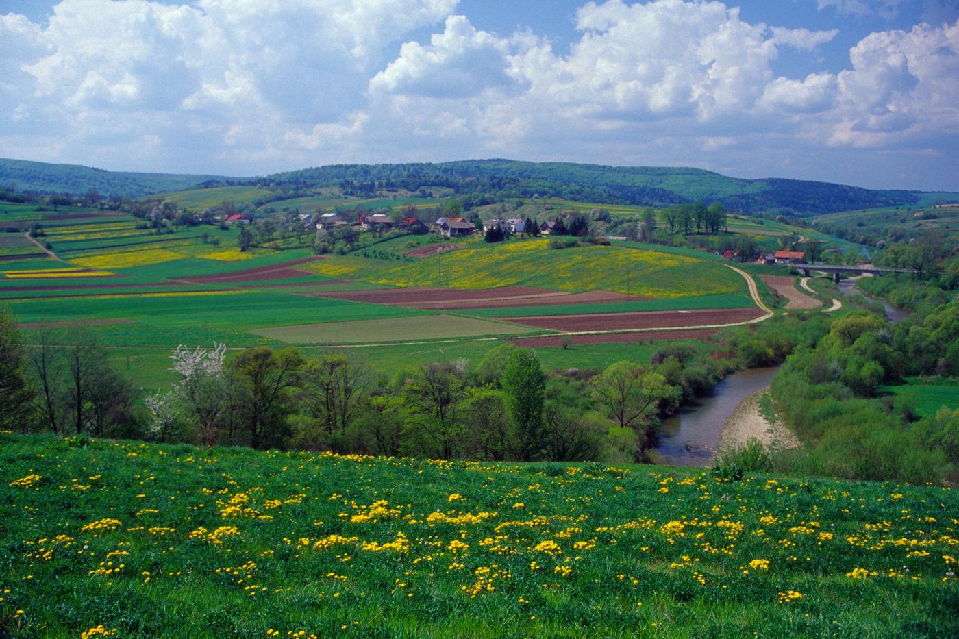 Pogórze Przemyskie