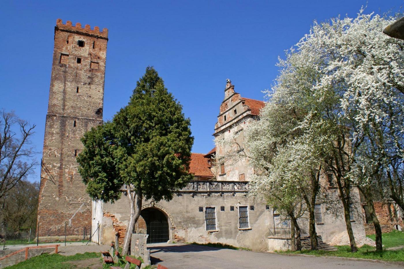 Zamek w Prochowicach. Fot. Barbara Maliszewska, CC BY-SA.3.0