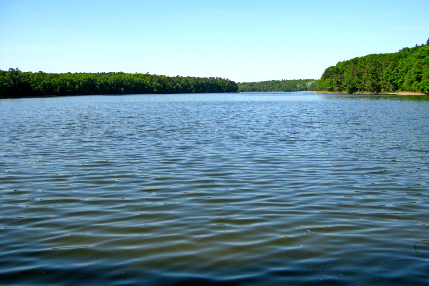 Jezioro Góreckie, Wielkopolski Park Narodowy