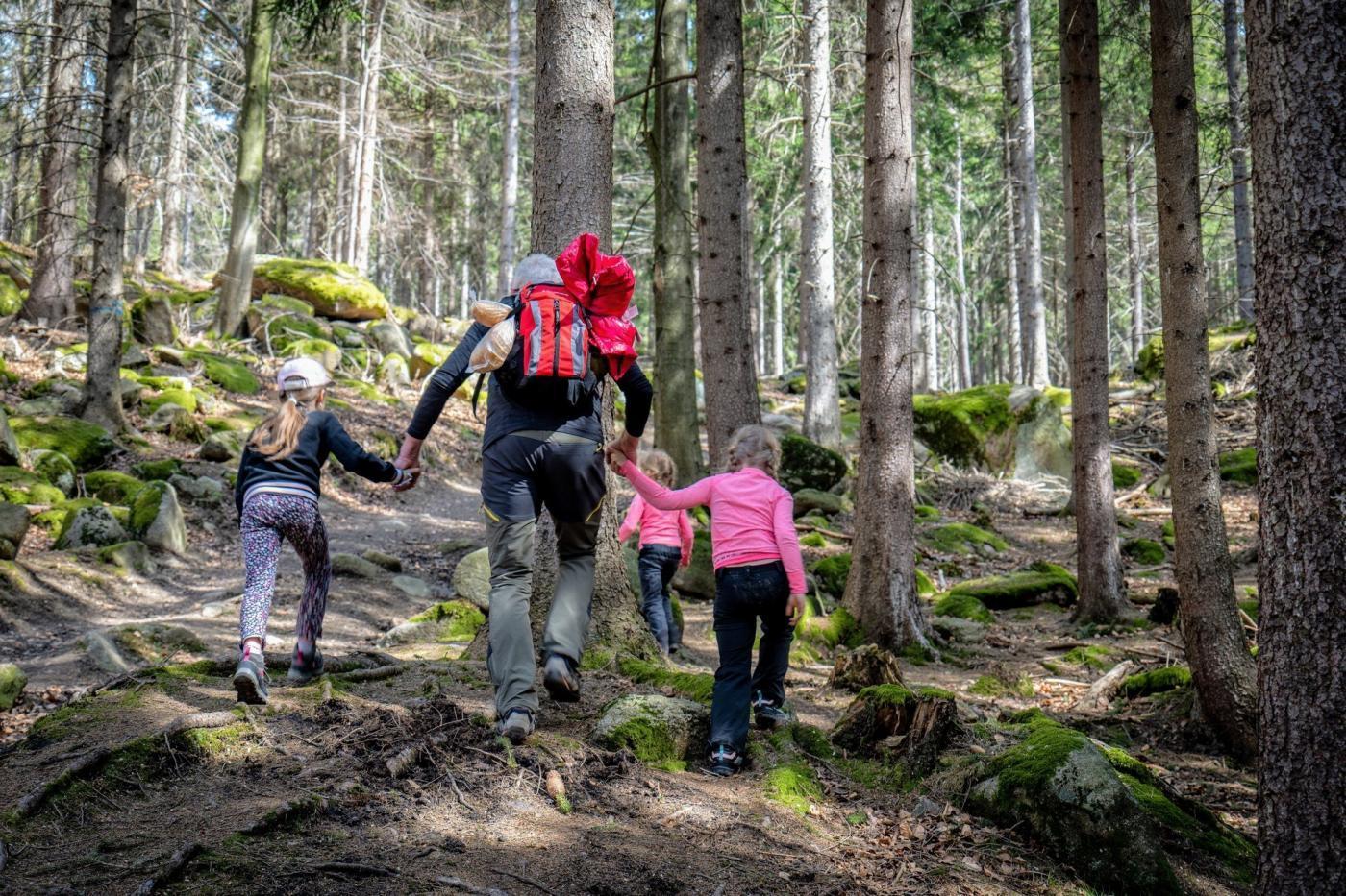 Gdzie pochodzić po górach – szlak żółty ze Strużnicy. dzieci w górach